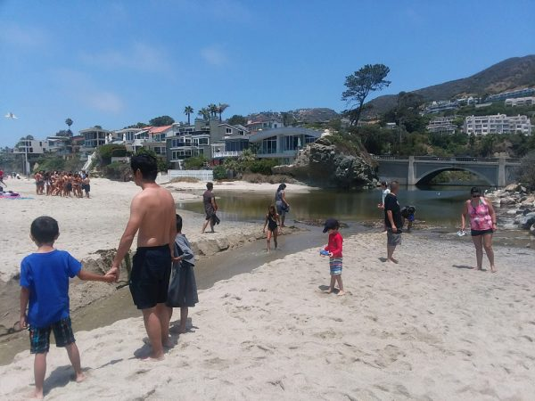 Families enjoy wading in the mouth of Aliso Creek, which carries urban runoff onto the shores of Aliso Beach. Photo  courtesy of Jinger Wallace.